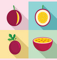 maracuja icons set flat style vector image vector image