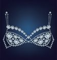 shiny bra made up a lot of diamonds vector image vector image
