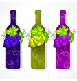 Bottle wine with grapes and vector image vector image