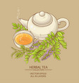 cup of licorice tea and teapot vector image vector image