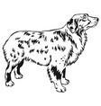 decorative standing portrait of dog australian vector image vector image