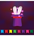 Magic hat with rabbit ears Elements for party