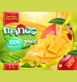 mango juice sweet tropical fruits 3d realistic vector image