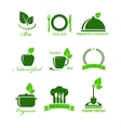 set of vegetarian food icons vector image vector image