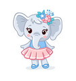 baelephant in a beautiful dress animal vector image