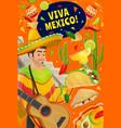 cinco de mayo holiday viva mexico party fiesta vector image vector image