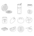 design tomat and diet logo collection vector image vector image