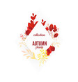 flat abstract autumn plants frame vector image vector image