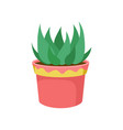 green home plant in a flowerpot cartoon vector image
