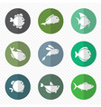 group of fish in the circle vector image vector image
