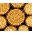 vector wooden background vector image
