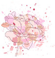 drawing rose flower vector image