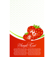 abstract card with strawberry fruits vector image