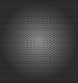 black metallic background vector image