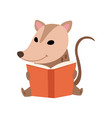 cute opossum sitting and reading book adorable vector image vector image