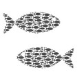 fish pair collage of fish icons vector image
