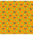 Fruits kiwi seamless patterns vector image