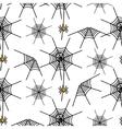 halloween spider net pattern vector image