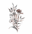hand drawn painting with field plants on white vector image vector image