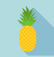 pineapple icon with long shadow vector image vector image