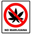 prohibition sign icon no cannabis vector image