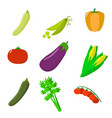 set of vegetables organic vegetarian healthy food vector image