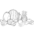 tropical fruits for coloring book vector image vector image