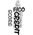 you and your fico score text word cloud concept vector image vector image