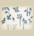 bamboo design elements hand drawn oriental vector image