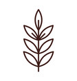 branch tree leaves foliage organic line style vector image vector image