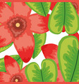 exotic and tropical flowers with leafs pattern vector image vector image