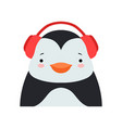 funny penguin in headphones cute cartoon animal vector image