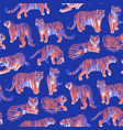 graphic seamless pattern tigers in different vector image