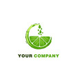 green orange water drop juice logo designs vector image