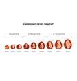 pregnancy fetal foetus development embryonic vector image vector image