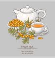 sea buckthorn tea vector image vector image