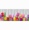 seamless horizontal pattern with tulips vector image vector image