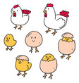 set of chicken and egg vector image