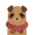 cartoon portrait of a dog in a scarf stylized pet vector image