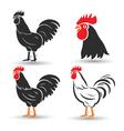 Chicken3 vector image vector image