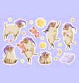 cute sheep in nightcap cartoon animal stickers vector image