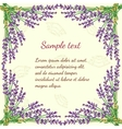 Floral frame with lavender vector image