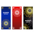 golden elements of the mandala on dark red blue vector image
