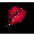 grunge kiss vector image