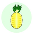 half pineapple icon pineapple split in a half vector image vector image