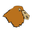 head big lion african powerful fierce vector image vector image