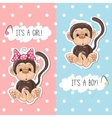 Monkey boy and girl vector image vector image