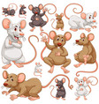 seamless background with many rats vector image vector image