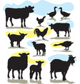 set farm animals vector image