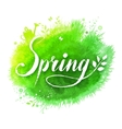 Spring word lettering vector image vector image